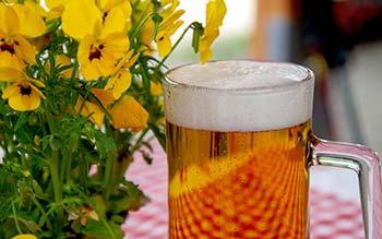 Bier im Paulaner im Tal